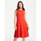Seamed Sleeveless Flare Dress