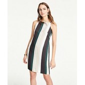Striped Square Neck Shift Dress