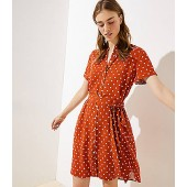 Polka Dot Pocket Shirtdress