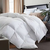 Kathy Ireland White Goose Feather and Goose Down Comforter