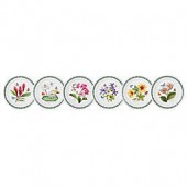 Portmeirion Exotic Botanic Garden Assorted Salad Plates (Set of 6)