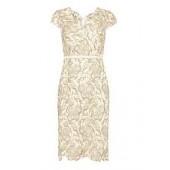 Lottie Lace Dress