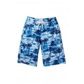 Tropical Board Shorts (Big Boys)