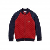 Boys Teddy Neck Colorblock Quilted Cotton Sweatshirt