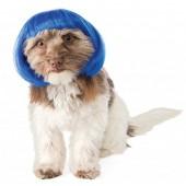 Rubies Costume Blue Bob Dog Wig