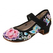 AvaCostume Women's Flower Embroidery Low Heel Cheongsam Mary Jane Dance Shoes