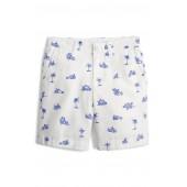 Stanton Cruisin Print Shorts