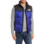 Nuptse 1996 Packable Quilted Down Vest
