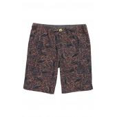 Zebra Shorts