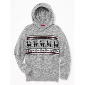 Graphic Hooded Sweater for Boys