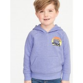 Graphic Raglan Pullover Hoodie for Toddler Boys