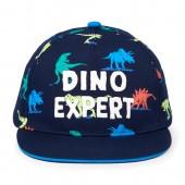 Toddler Boys 'Dino Expert' Baseball Hat