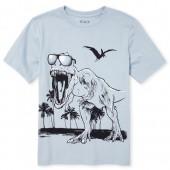 Boys Short Sleeve Beach Dino Graphic Tee