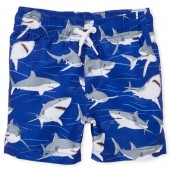 Baby And Toddler Boys Print Swim Trunks