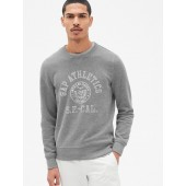 Vintage Soft Logo Graphic Pullover Sweatshirt