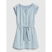 Railroad Stripe Denim Dress