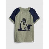 Toddler Graphic Raglan T-Shirt