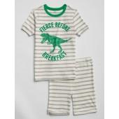 Kids Stripe Dino Graphic Short PJ Set