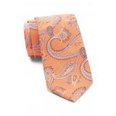 Silk Mulberry Paisley Tie