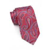 Silk Westview Paisley Tie