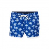 Traveler Polo Bear Swim Trunk
